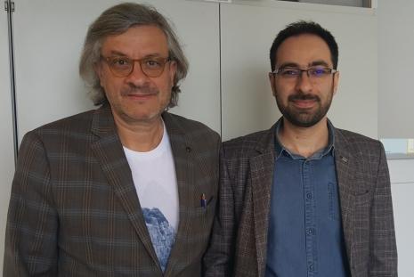 light impedance by Mehdi Ansari-Rad and Juan Bisquert