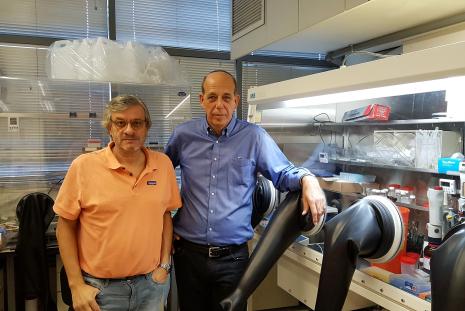 Prof. Juan Bisquert and Prof. Arie Zaban