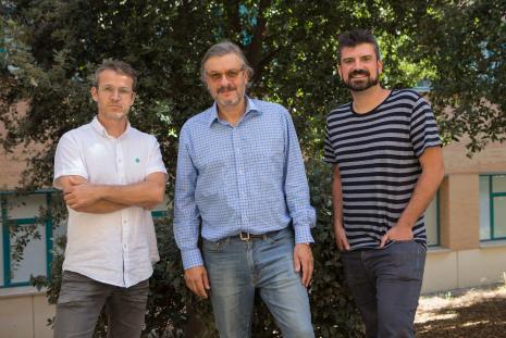 Víctor Flors, Juan Bisquert e Iván Mora-Seró