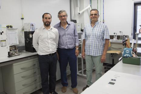 Antonio Guerrero, Juan Bisquert and Germà García