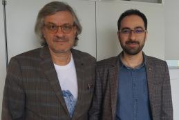 Mehdi Ansari-Rad and Juan Bisquert